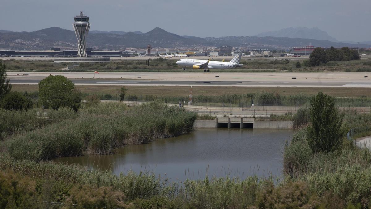 Vista de una pista de El Prat, con el humedal de La Ricarda en primer plano.