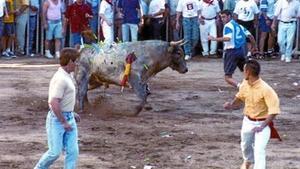 Un toro ferit amb dards i altres objectes punxants llançats pel públic, a Coria (Càceres) el 1997. Aquesta pràctica va ser prohibida fa dos anys.