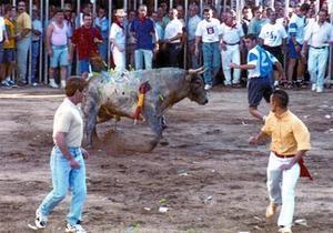 Un toro herido con dardos y otros objetos punzantes lanzados por el público, en Coria (Cáceres) en 1997. Esta práctica fue prohibida hace dos años.