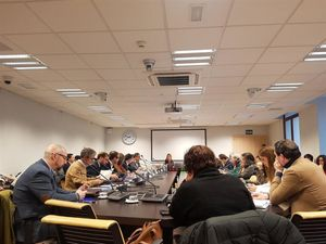 Comisión de Desarrollo Urbano del Ayuntamiento de Madrid.