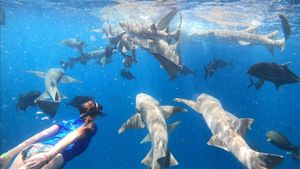 Imagen de las islas Maldivas, en 'Españoles en el mundo'