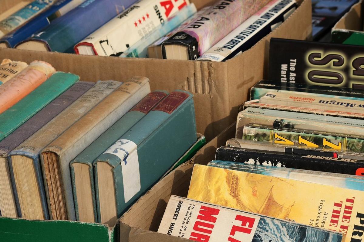 Los libros, entre los principales objetos registrados en la plataforma ReMAD.