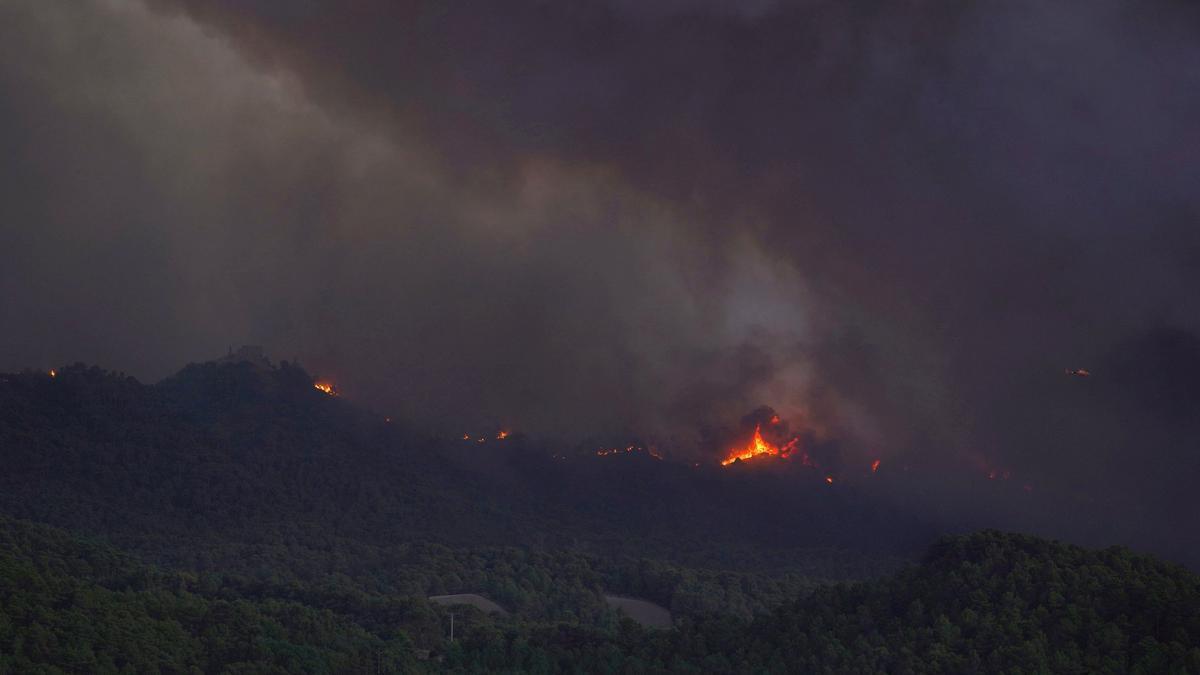 Incendios forestales: el alto precio del abandono de los bosques
