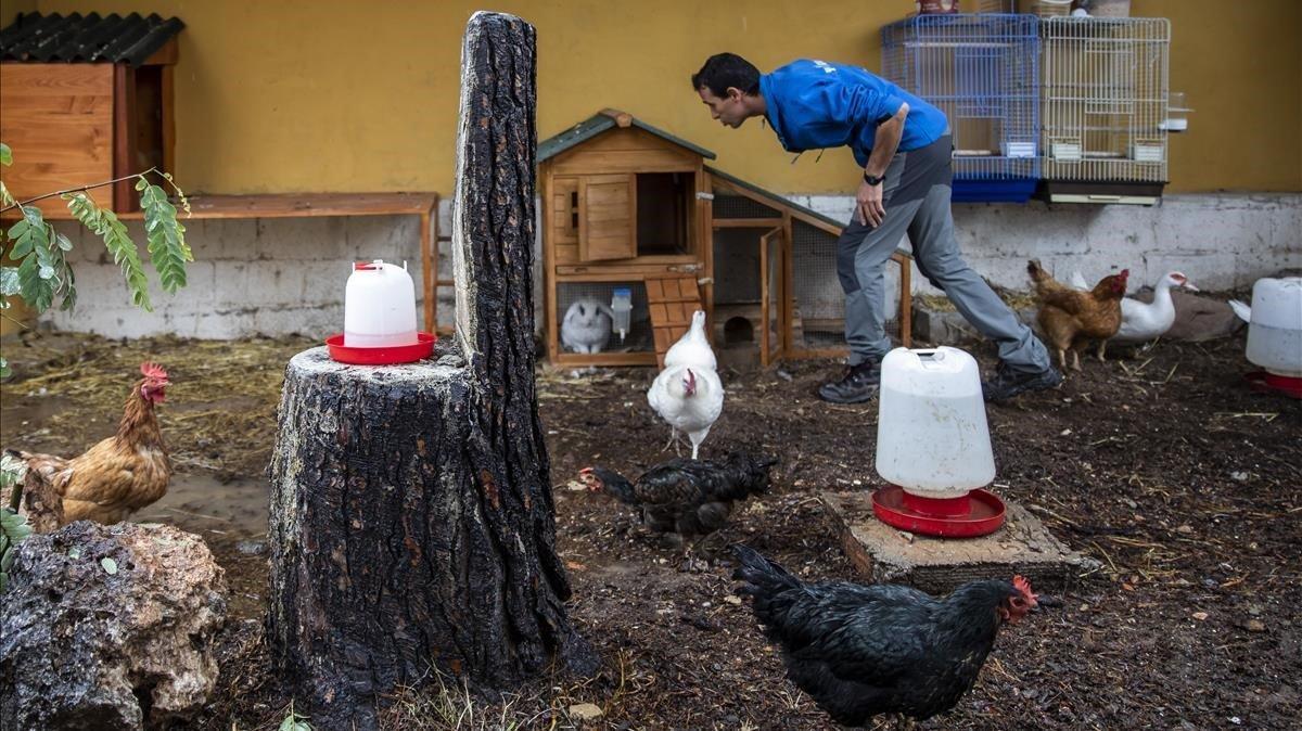 Jorge Pereira, en la granja de la asociación You Can, en València.