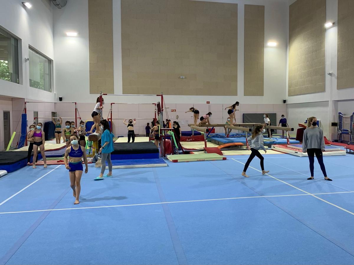 Nuevo tapiz en la sala de entrenamientos de gimnasia artística del CEM Las Moreras
