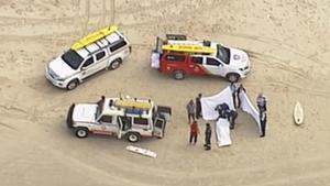 Un surfista mor després de l'atac d'un tauró blanc a Austràlia