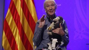 Jane Goodall, Premi Internacional de Catalunya, el la Generalitat.