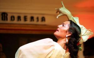 Espectáculo flamenco en el Corral de la Morería.
