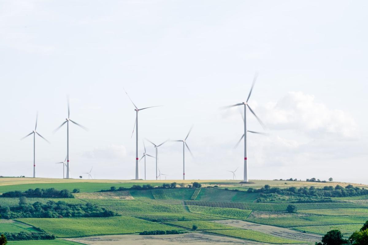 La ISR apuesta por el medio ambiente