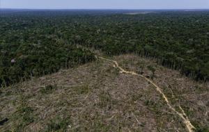 Zona deforestada de la Amazonia en Brasil.