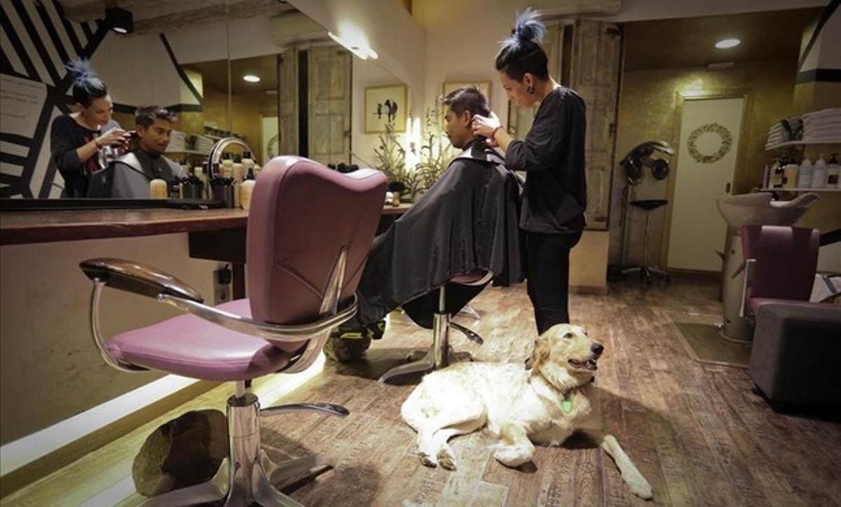 La mano loca, en el Raval, es una de las peluquerías más 'dog friendly'de Barcelona.
