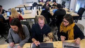 Clase de 'coding' en la academia Ironhack.