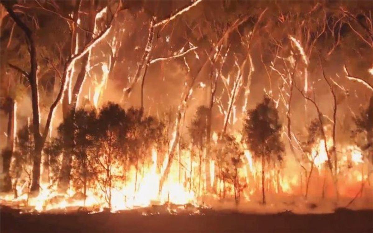 Los incendios forestales en Australia continúan con mucha fuerza.