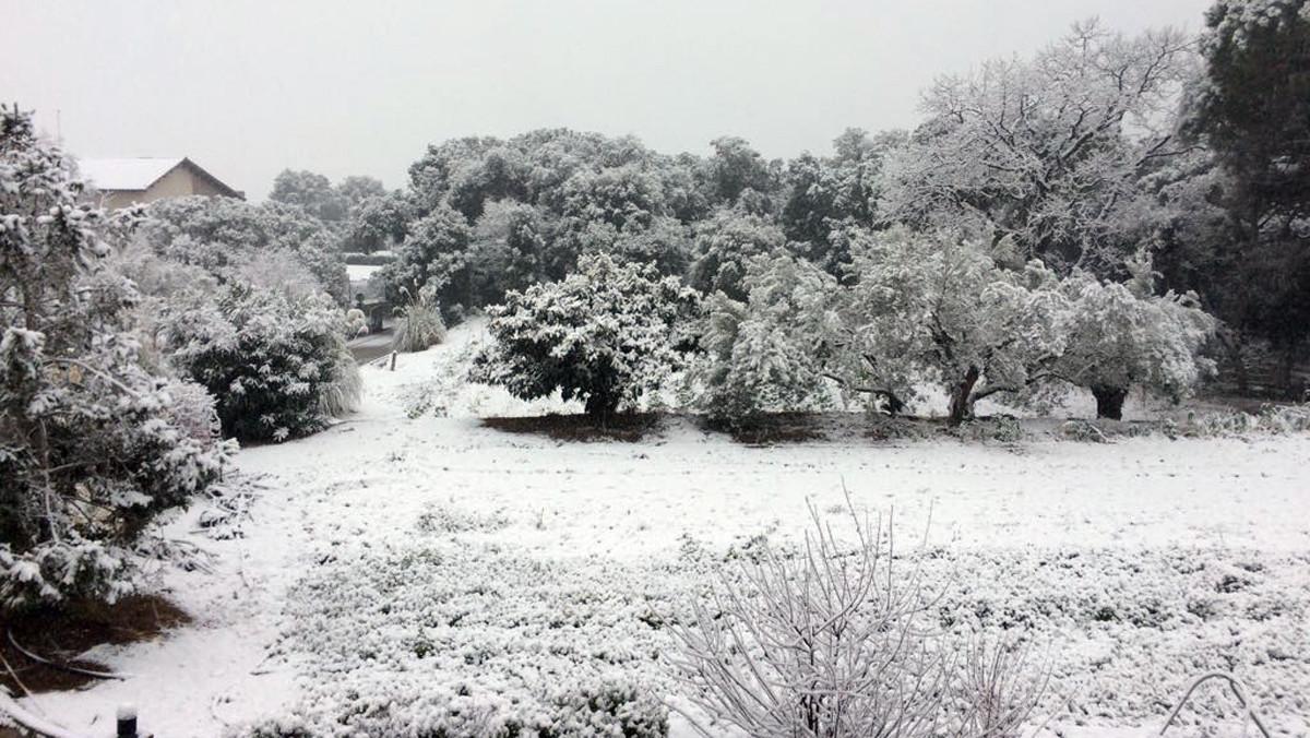 L'Ametlla del Vallès(Vallès Oriental) presenta este aspecto tras la nevada.