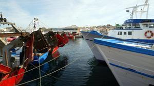 Barcas de pesca en el puerto de Palamós.