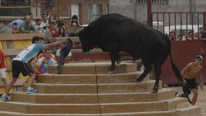 'Correbous' en Santa Bàrbara, en el Montsià.