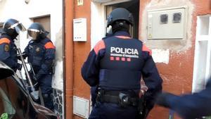 Operación de los Mossos que ha permitido detener a cinco personas y desmantelar seis plantaciones de marihuana en el Alt Empordà.
