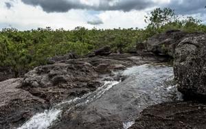 Vista delParque Nacional Natural de La Macarena, en Colombia.
