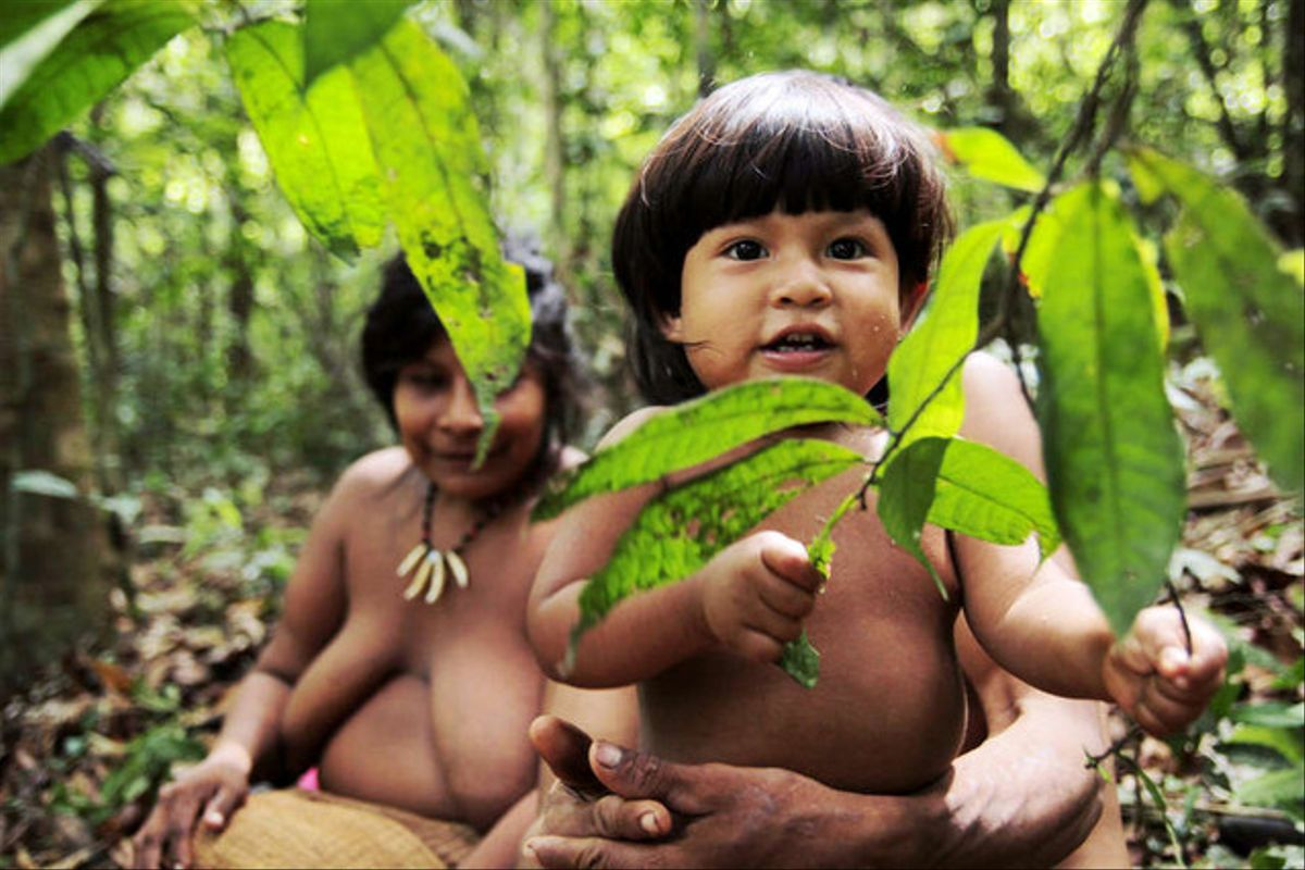 Imagen de la campaña de la asociación Survival Internacional para la superviviencia de la tribu amazónica awá.