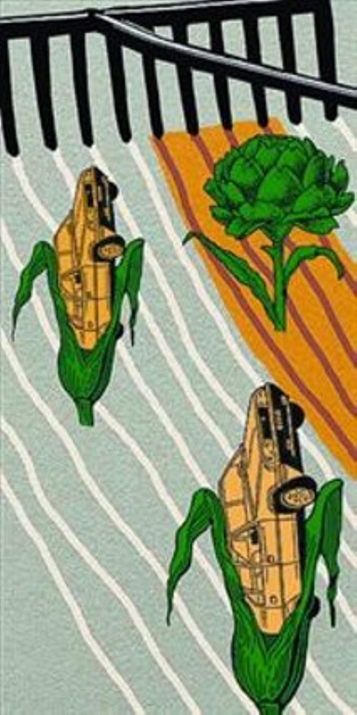 Agrocarburantes: cómo y dónde