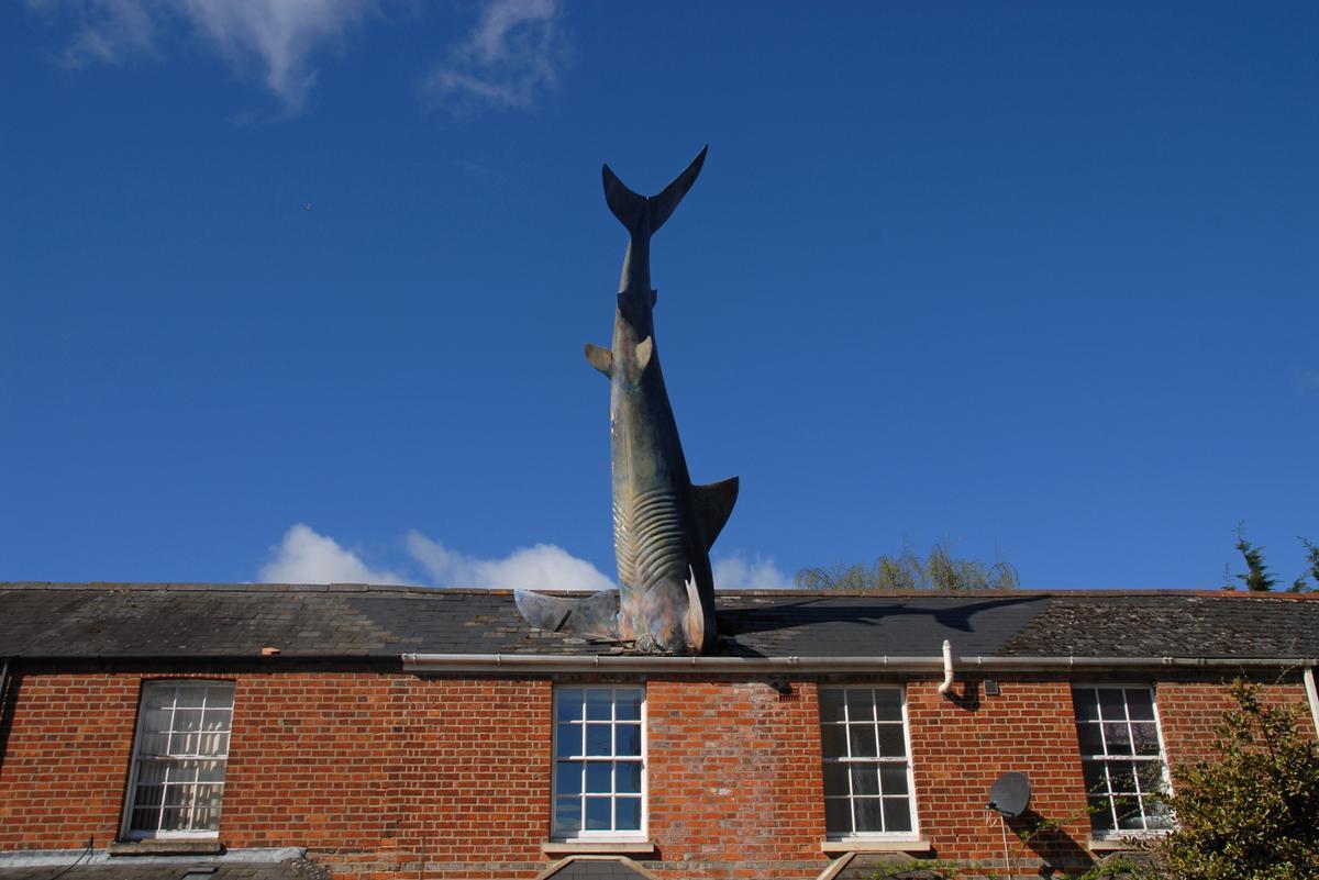 Tiburón de Headington, de John Buckley.