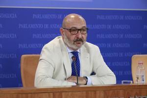 El portavoz de Vox Andalucía, Alejandro Hernández, durante la rueda de prensa