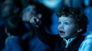 La cara de ilusión de un niño descubriendo el cine no tiene precio.