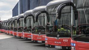 Imagen de lo nuevos autobuses híbridos y de gas natural comprimido de la flota de TMB.