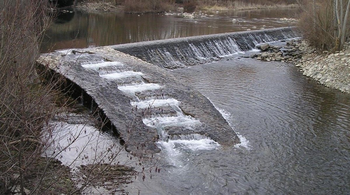 Escalera para facilitar el remonte de los peces en el río Ter a su paso por Ripoll, cerca de la zona de Agafallops.