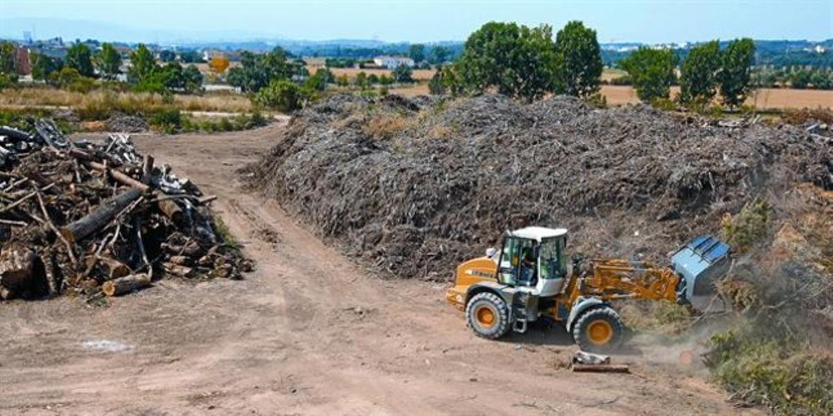 Acumulaciones de madera en los terrenos donde está prevista la construcción de la nueva central de biomasa de La Garriga, la semana pasada.