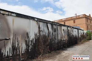 Valla de vegetación en Cerdanyola supuestamente quemada por los cuatro menores detenidos.