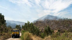 Labores de extinción durante el fin de semana del incendio declarado el jueves en Almonaster la Real (Huelva).