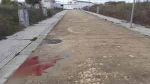 Rastro de sangre en el lugar donde se produjo el ataque mortal de un perro peligroso en Cassà de la Selva
