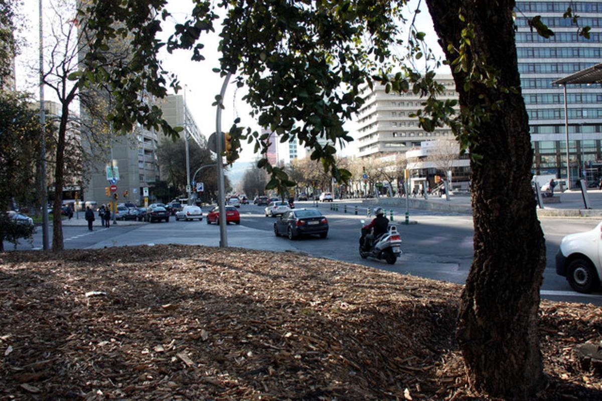 Confluencia de las calles Numància, Tarragona y Josep Tarradellas donde ha tenido lugar el incidente entre los Mossos y un jabalí.