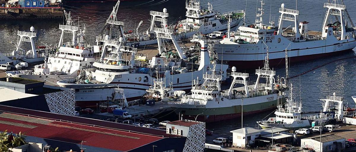 Acord Brexit: Aranzels de fins al 18% per a la pesca espanyola a les Malvines