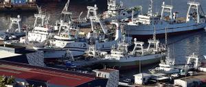 Arrastreros congeladores de la flota de Malvinas amarrados en Vigo estos días