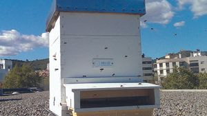 Una de las colmenas que Viladecans ha instalado en el municipio para el proyecto 'Bee Happy'.