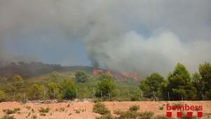 Las llamas se han iniciado en una zona forestal sobre las 15.30 horas de este lunes.