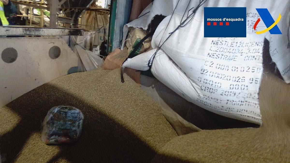 Intervenidos 250 kilos de cocaína en el puerto de Barcelona.