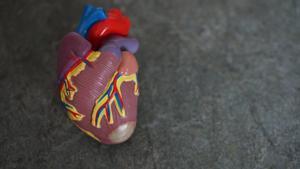 Un corazón de plástico