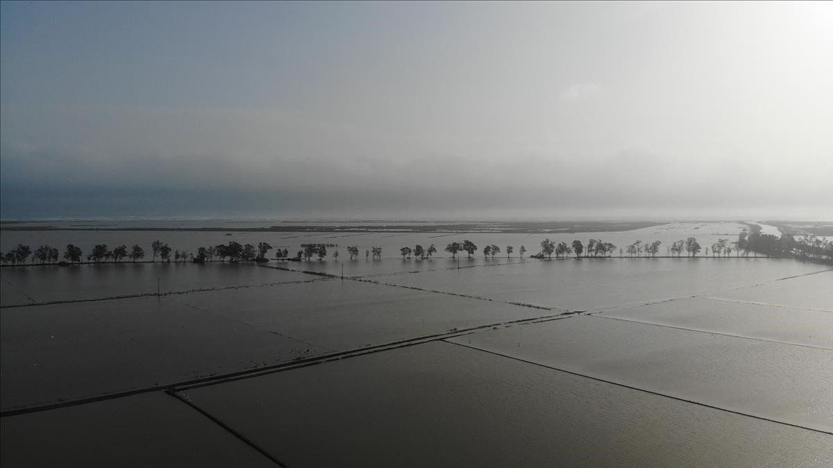 El delta del Ebro, completamente inundado tras el paso del 'Gloria'.