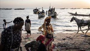 Una estranya malaltia cutània afecta més de 1.000 pescadors del Senegal