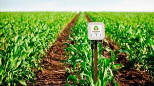 Així és l'empresa emergent que fa l'agricultura més sostenible