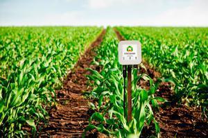 Así es la startup que hace a la agricultura más sostenible