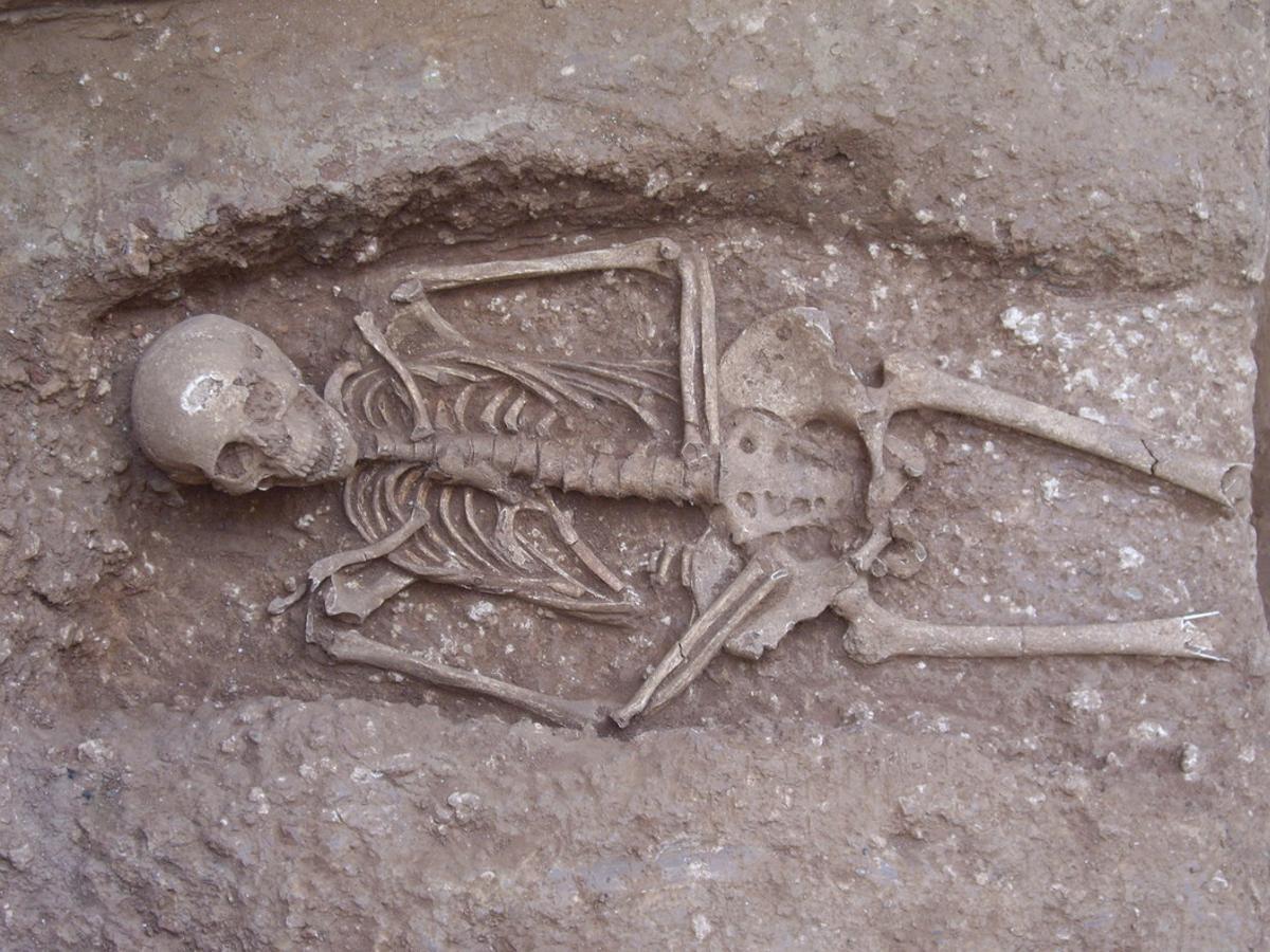 Uno de los tres esqueletos descubiertos en las obras.