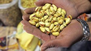 El pistachoes nutritivo y aporta magnesio, vitaminas del complejo B, fibra, así comouna mezcla de carbohidratos, proteínas y grasas.