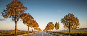 Las carreteras y autopistas deben jugar un papel clave para lograr los objetivos de reducción de emisiones.