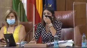 Una rata irromp al Parlament andalús i revoluciona el ple