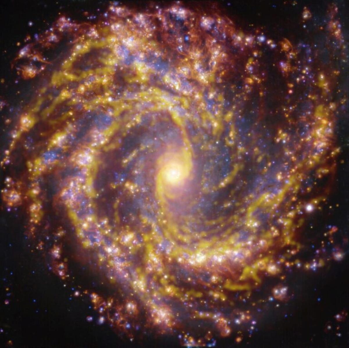 Descubren fuegos artificiales cósmicos en los viveros de galaxias cercanas