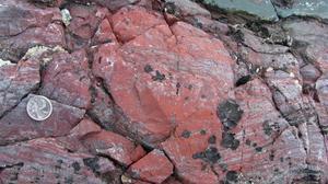 Els fòssils de la vida més antiga de la Terra